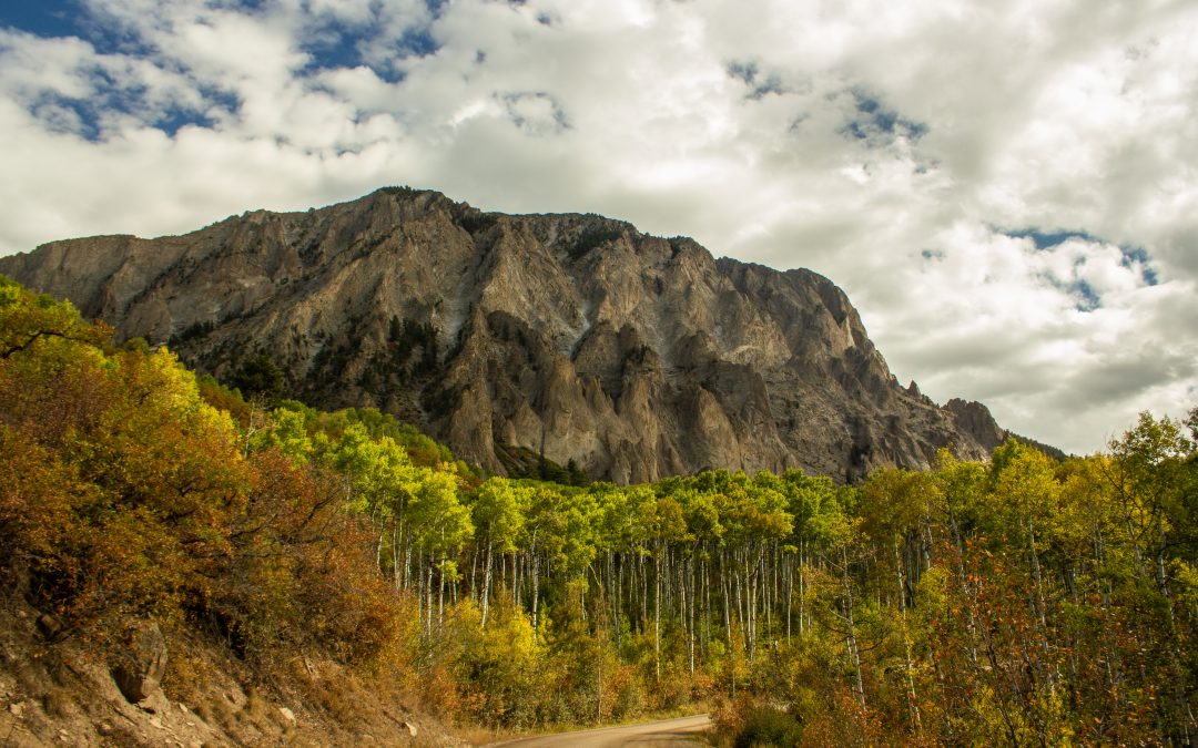Fall on Kebler Pass